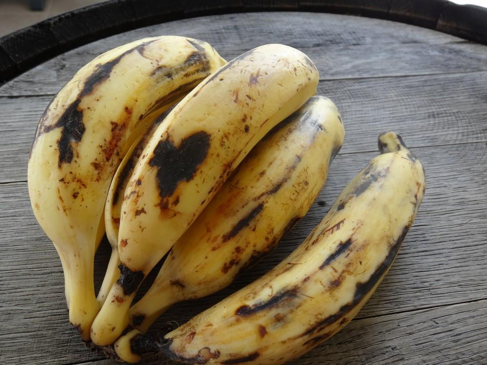 Gratin de plantains vivre sur une le for Banane plantain au barbecue